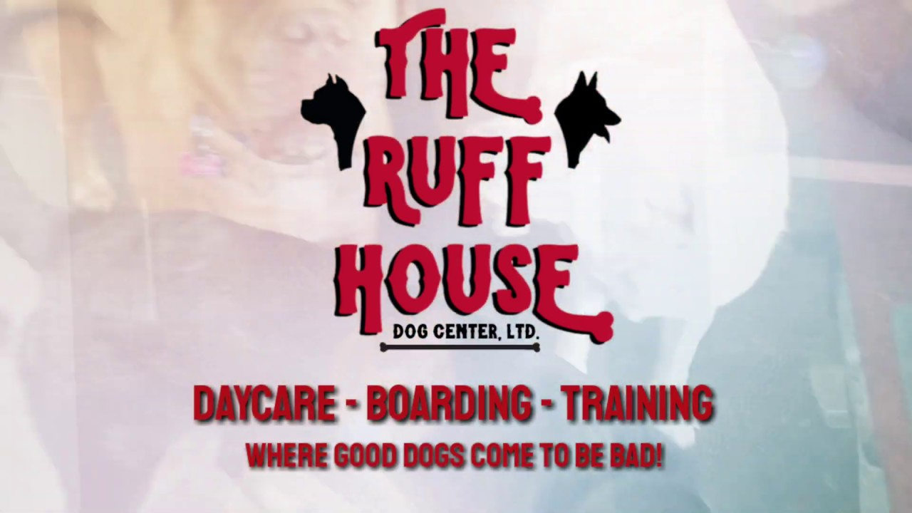 Welcome To The Ruff House Dog Center The Ruff House Dog