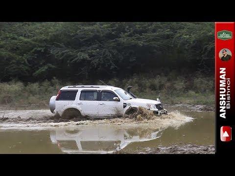 Yeti 4x4, Scorpio MLD 4wd, Isuzu V Cross, Duster, Endeavour Weekend offroading in Mud. Aug17