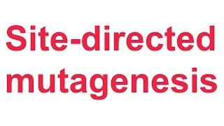 Tutorial 4: QuikChange site-directed mutagenesis (Stratagene)