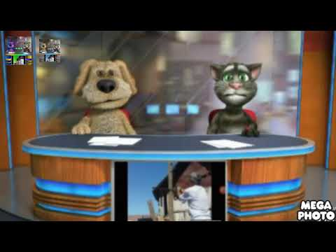 Talking Tom and Ben News: Word Cleanup 2012 Effects