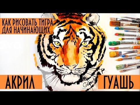 Как рисовать морду тигра