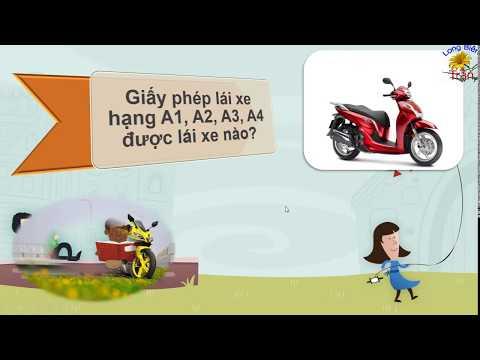 Bằng lái xe (GPLX) hạng A1, A2, A3, A4 lái được xe gì?| Có thời hạn không?