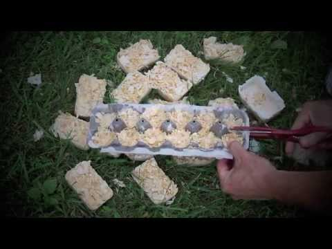 Making your own fire-starters
