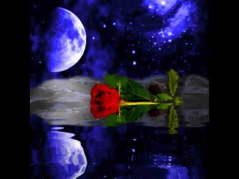 Frank Ferrari - Moonlight and roses
