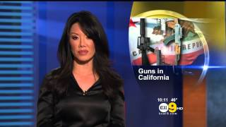 Sharon Tay 2013/01/29 KCAL9 HD