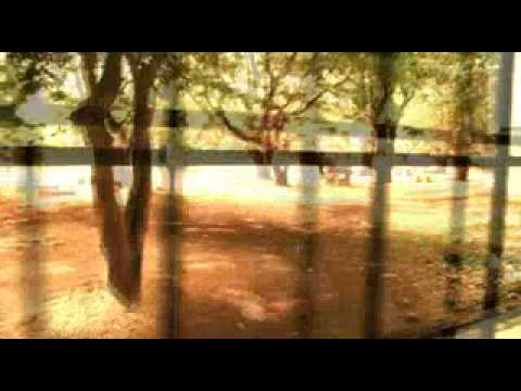 cochin college documentary trailer