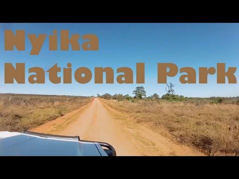 Nyika National Park - Malawi, Africa