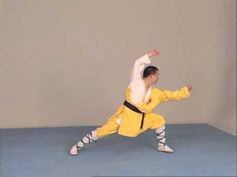 Shaolin - Apprendre les mouvements
