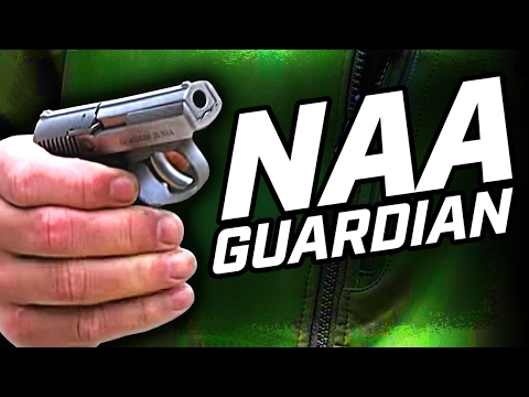 NAA Guardian - USCCA Gun Vault