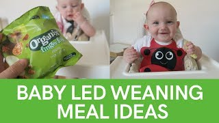 WHAT MY BABY EATS IN A DAY (6 MONTHS OLD) | BABY LED WEANING | AD
