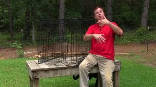 How to Housebreak and Potty Train your German Shepherd Puppy