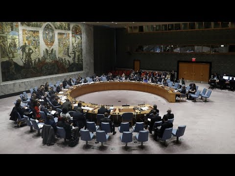 UNSC: US & Russia present rival resolutions on Douma probe