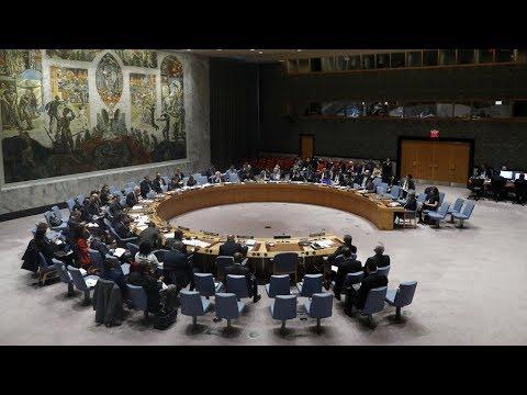 UNSC: US & Russia present rival resolutions on Douma probe