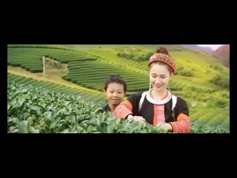 Welcome to Vietnam_Vietnam Travel Guide full HD (2015)!
