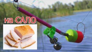 Рыбалка на САЛО на большой реке