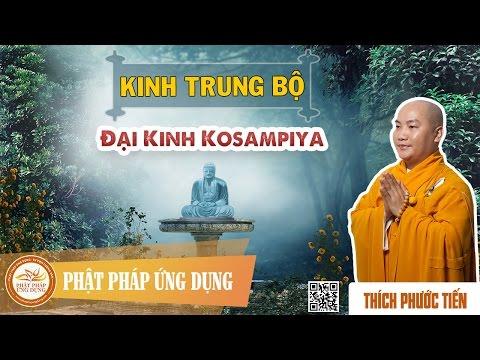 Kinh Trung Bộ - Đại Kinh Kosampiya - Thầy Thích Phước Tiến