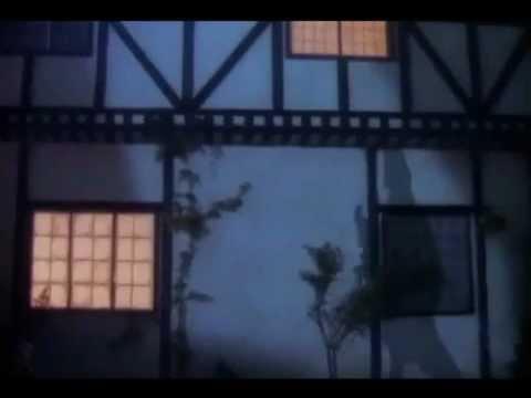 Everywhere (en todas partes), Fleetwoodmac subtítulada ingles / español.wmv