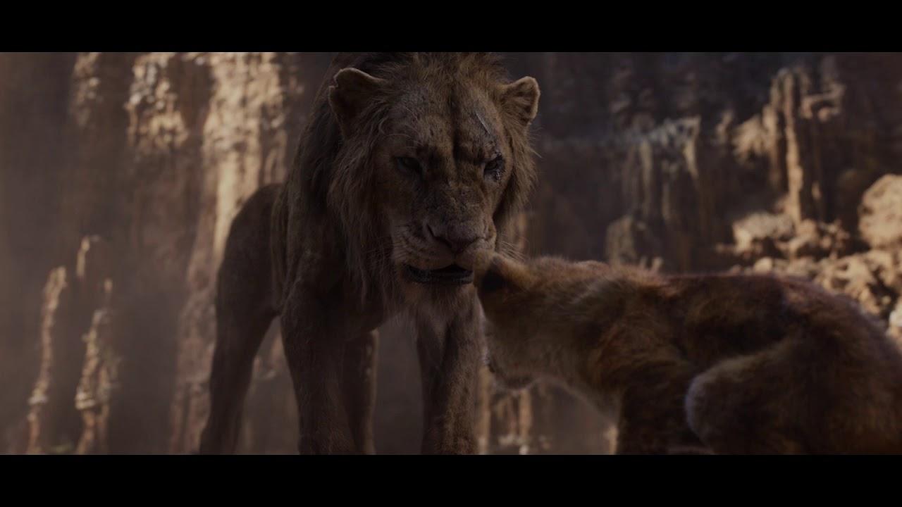 მეფე ლომი  18 ივლისიდან