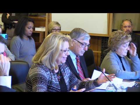 20 Week Abortion Ban   Iowa Senate Human Resources Committee