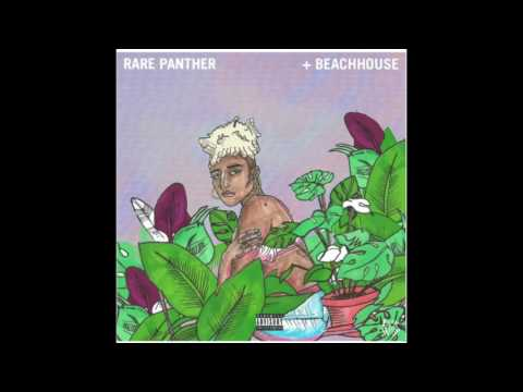 Duckwrth 'Rare Panther + Beach House (Produced by: Sad Money & Channel Tres)