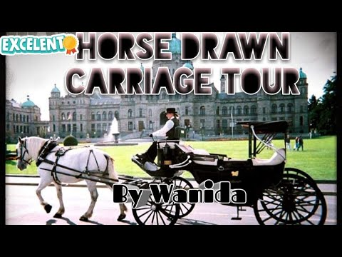 EP. 28 Horse Drawn Carriage Tour