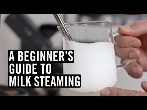 A Beginner's Guide to Steaming Milk