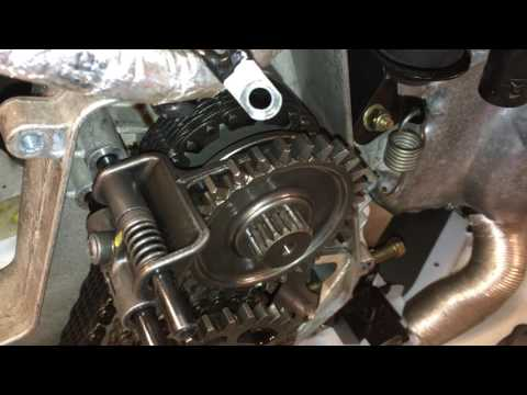 How to change Yamaha Viper Chaincase and Engine Oil