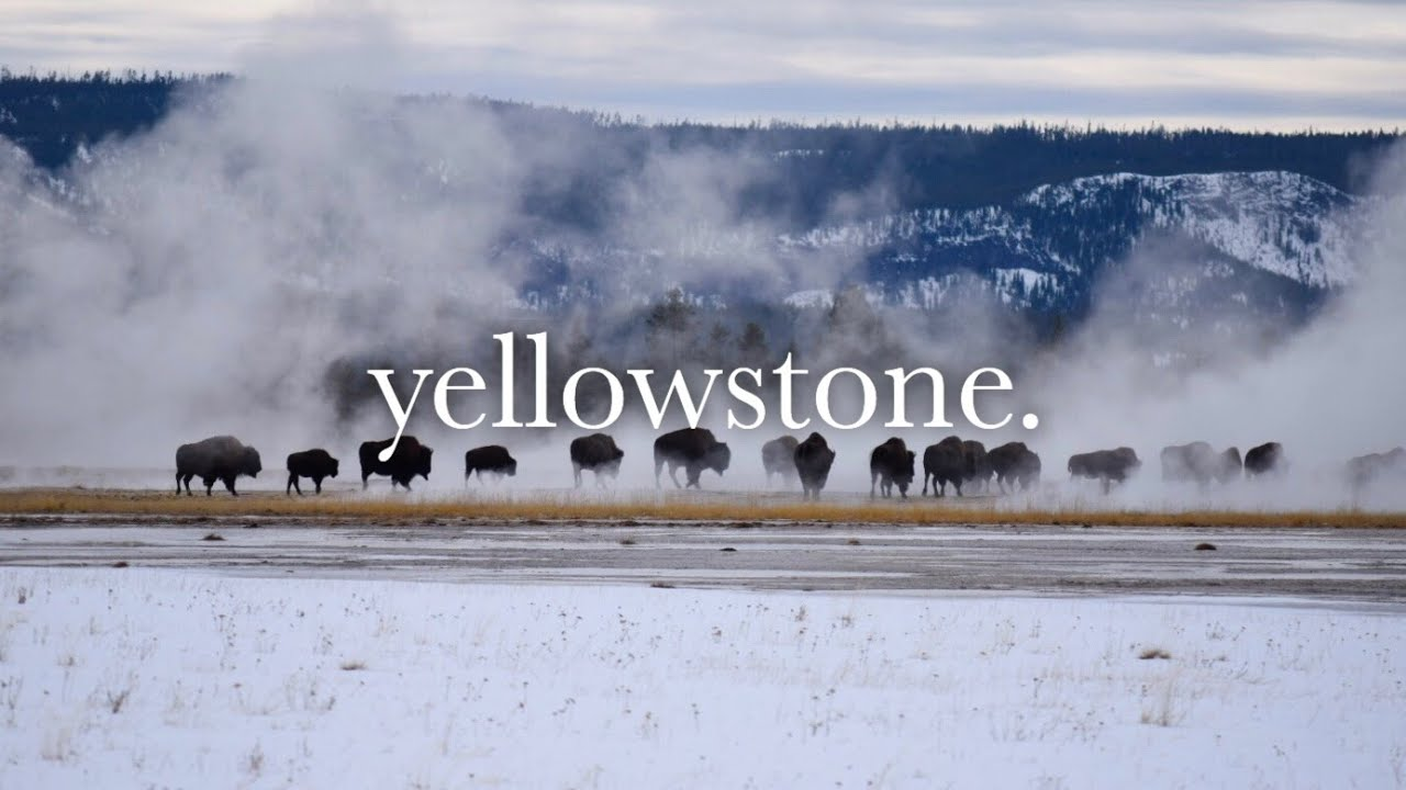 4. yellowstone