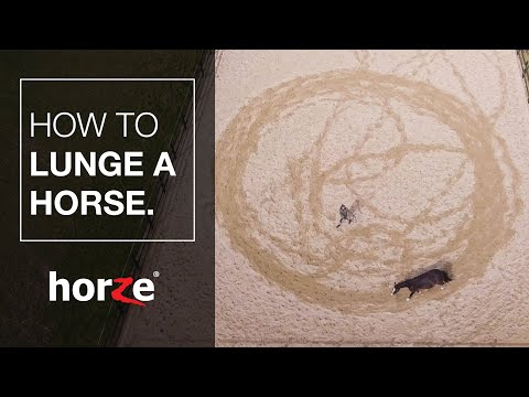 How To Lunge Your Horse - Tutorial