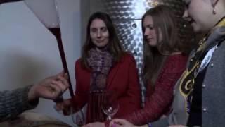 Taste of Serbia   St. Trifun Zupa Trailer