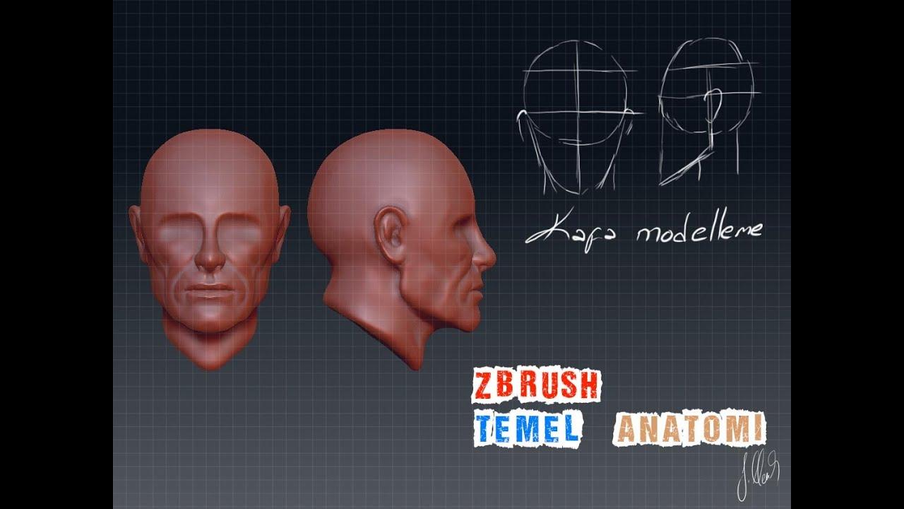 Download zbrush kafa modelleme ( temel anatomi )