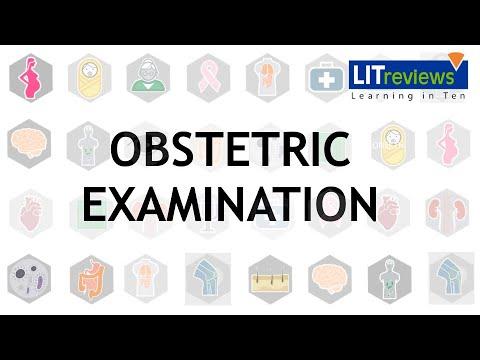 Obstetric Examination - YouTube