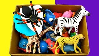 Learn Colors With Wild Animals in a Box | Shark Ocean Toys For Kids
