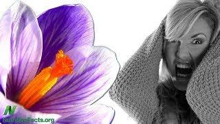 Šafrán jako léčba premenstruačního syndromu