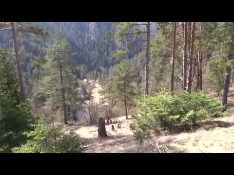 Travel tourism - Slovak Paradise National Park - Hornad Canyon part 06