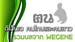 รวมผลตรวจ DNA แสดงเผ่าพันธุ์คนไทยและคนลาว จาก WEGENE : Thai and Lao personal DNA results from WEGENE