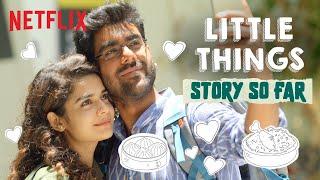 Little Things: The Final Recap | Mithila Palkar | Dhruv Sehgal | @Dice Media | Netflix India