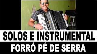#instrumental #ForróPéDeSerra - #FernandinhoDoAcordeon - Shows (11)98107-3706 Whats  #Sanfoneiro