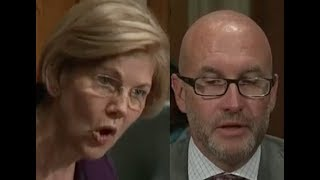 Elizabeth Warren GETS PISSED OFF & HUMILIATES Health Insurance Executive