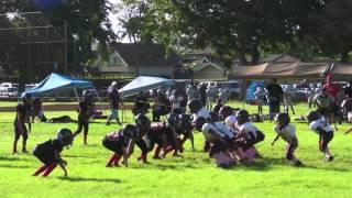 Kalani Falcons 2012 Mighty Mites