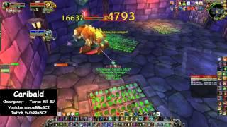 World first solo (hunter): CaribaLd vs Gluth (25 man)