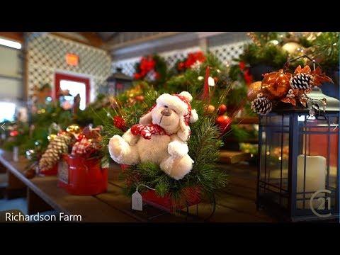 Chicagosuburbslife Richardson Christmas Tree Farm In Spring Grove Youtube