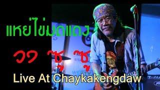 แหย่ไข่มดแดง - วงซู ซู Live at Chaykakengdaw