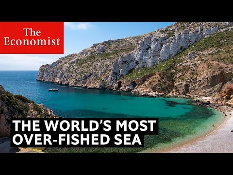 This is the most over-fished sea in the world | The Economist