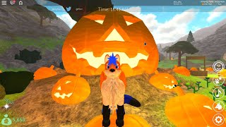 Roblox Pumpkin added in Wolves' Life 3!!!