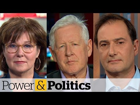 Political stories to watch for in 2020