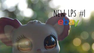 New LPS #1 (eBay Package, Dream LPS, New Mascot, My Birthday?)