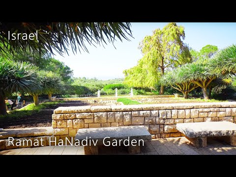Ramat HaNadiv GARDEN In Winter,  Zichron Yaakov, ISRAEL