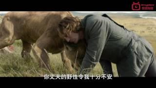 泰山傳奇:森林爭霸 (Legend Of Tarzan) 預告片 (HD 1080 中字)