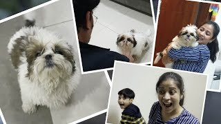 Booster Puppy Missed Us| Getting ready for Shopping| pet unconditional LOVE | Vlog | Sushma Kiron